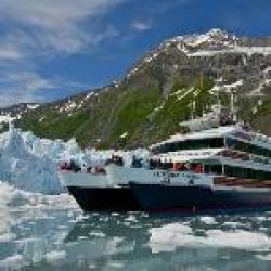 26 Glacier Cruise